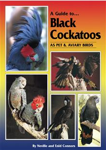 Black Cockatoo book