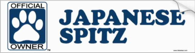 Japanese Spitz bumper sticker