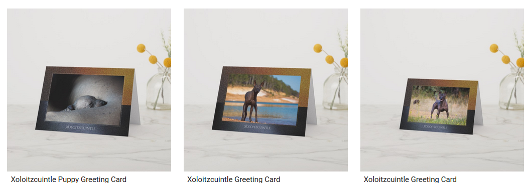 Xoloitzcuintli Greeting Cards