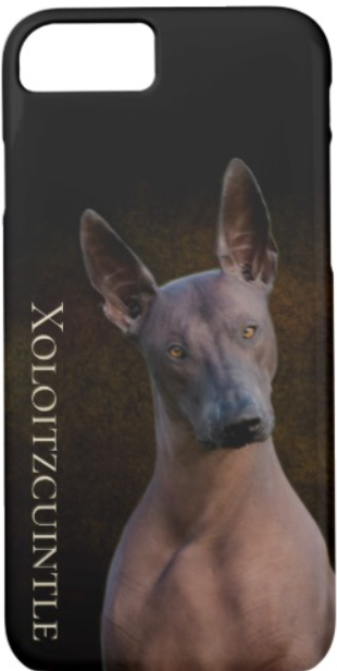 Xoloitzcuintle iPhone Cover