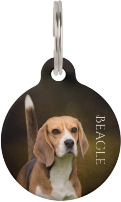 Beagle custom pet tag