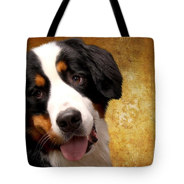 Bernese Mountain Dog tote bag by Stephen Smith