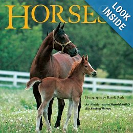 Horse And Equine Books Softcover Paperback