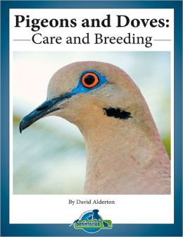 Pigeon Care eBook