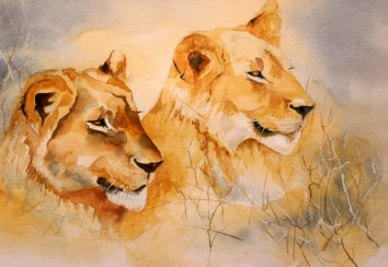 Wildlife watercolour