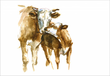 Cattle watercolour - istock.com