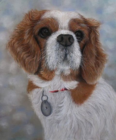 """Ruby"", the Cavalier King Charles Spaniel in pastels (A3 size)."