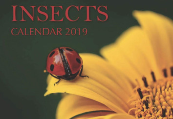 Insect calendar