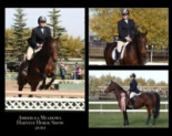 A Sharper Image - Equine Photography from Linda Finstad