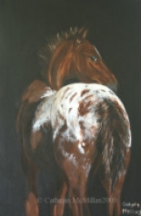 Equine Art by Catherin McMillan of Animal Art House Pet Portraits