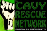 The Cavy Rescue Network