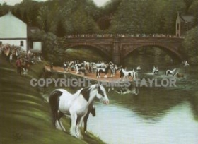 James Taylor   Gypsy Cob Fine Art Prints