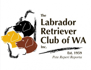 The Labrador Retriever Club of Western Australia