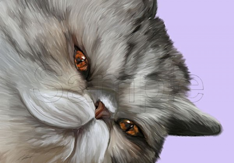 Cat Portraits by Cazzie Cathcart