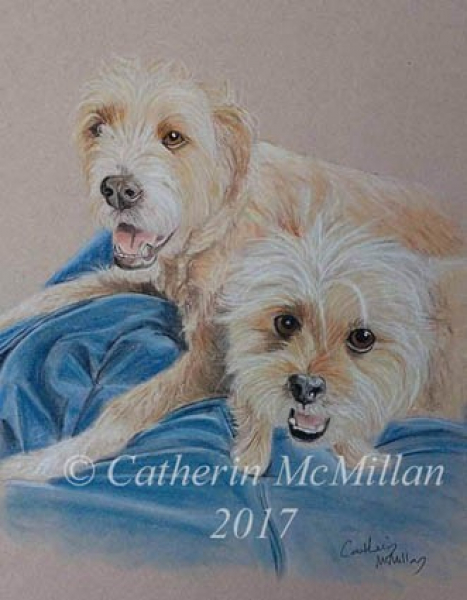 Dog Portraits by Catherin McMillan of Animal Art House Pet Portraits