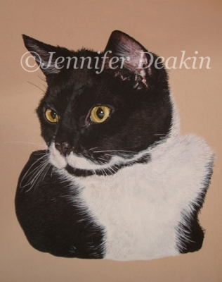 Cat Portraits hand painted on canvas from your photo