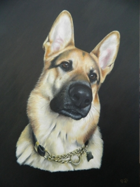 UK Pet Portrait Artist - Carl Jones