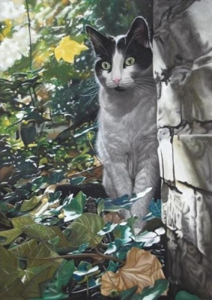 Pet Portraits and Wildlife Art by Karie-Ann