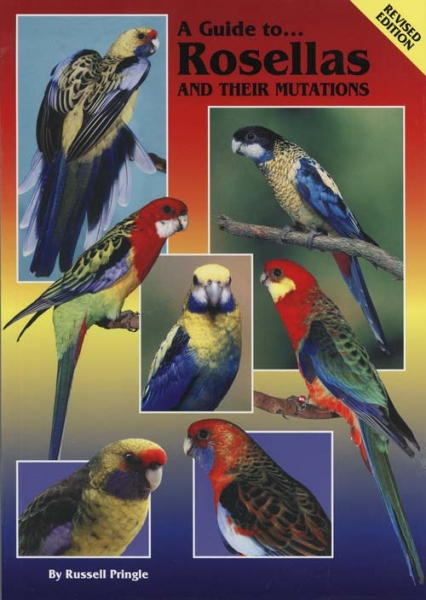 A Guide to Rosellas & Their Mutations