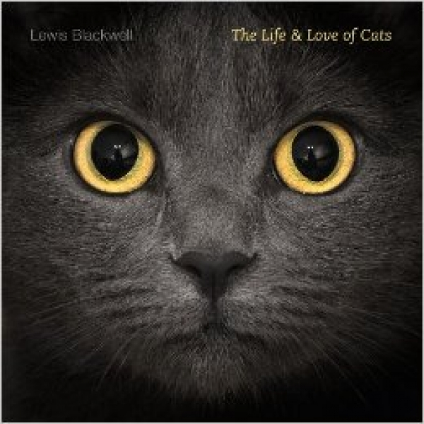 The Life and Love of Cats