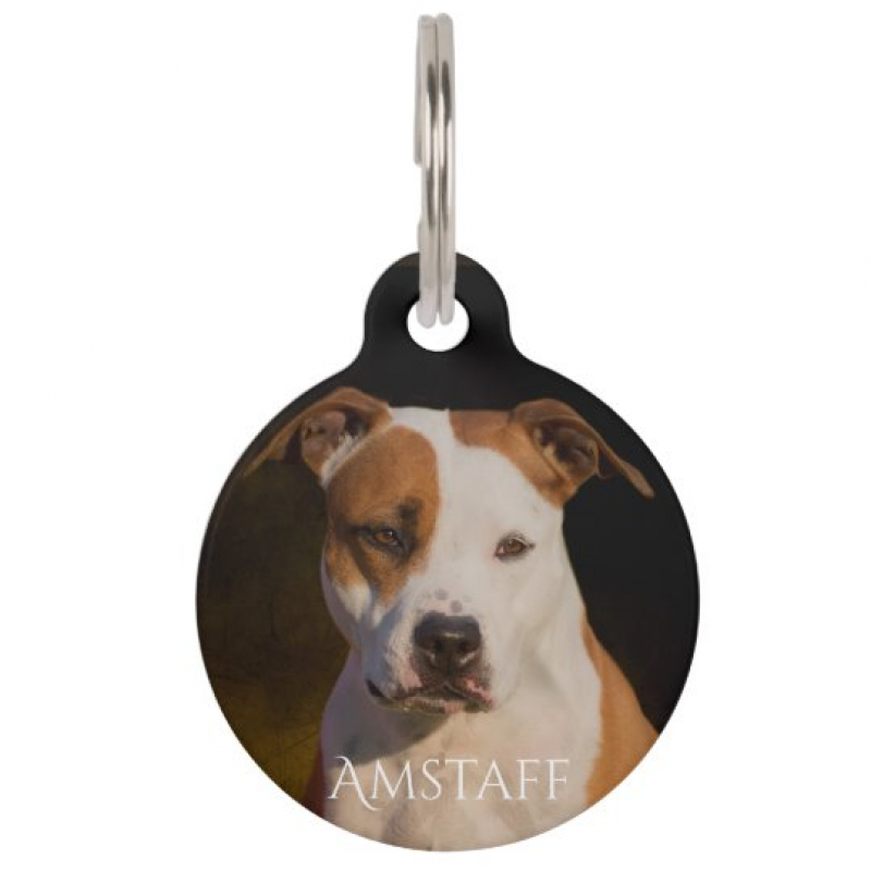 American Staffordshire Terrier ID Tag