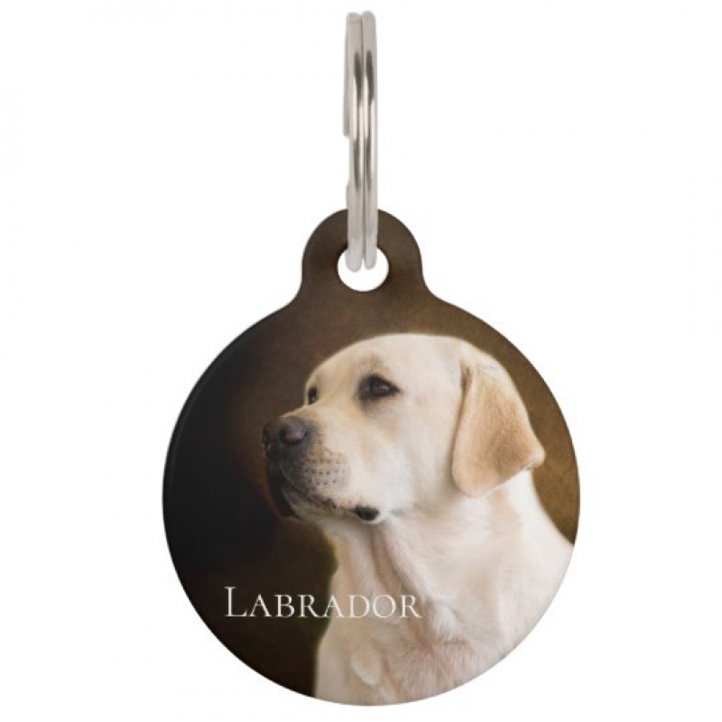 Labrador Retriever ID Tag