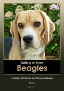 Getting to Know Beagles: A Guide to Choosing and Owning a Beagle