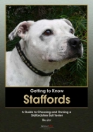 Getting to Know Staffords: A Guide to Choosing and Owning a Staffordshire Bull Terrier