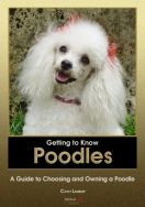 Getting to Know Poodles: A Guide to Choosing and Owning a Poodle