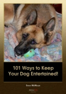 101 Ways to Keep Your Dog Entertained