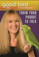 Train Your Parrot to Talk DVD