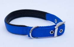 Padded Nylon Collar