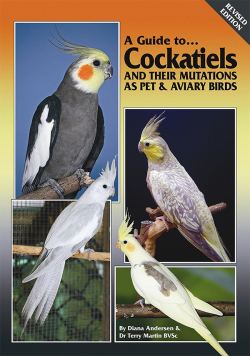 A Guide to Cockatiels and Their Mutations