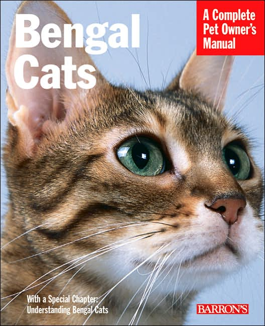 Bengal Cats Breed Profile